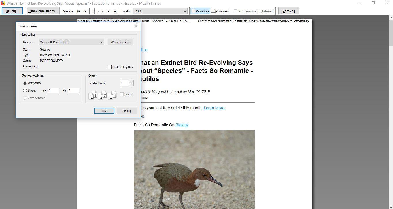 zapisywanie artykułów formie pdf - zrzut ekranu