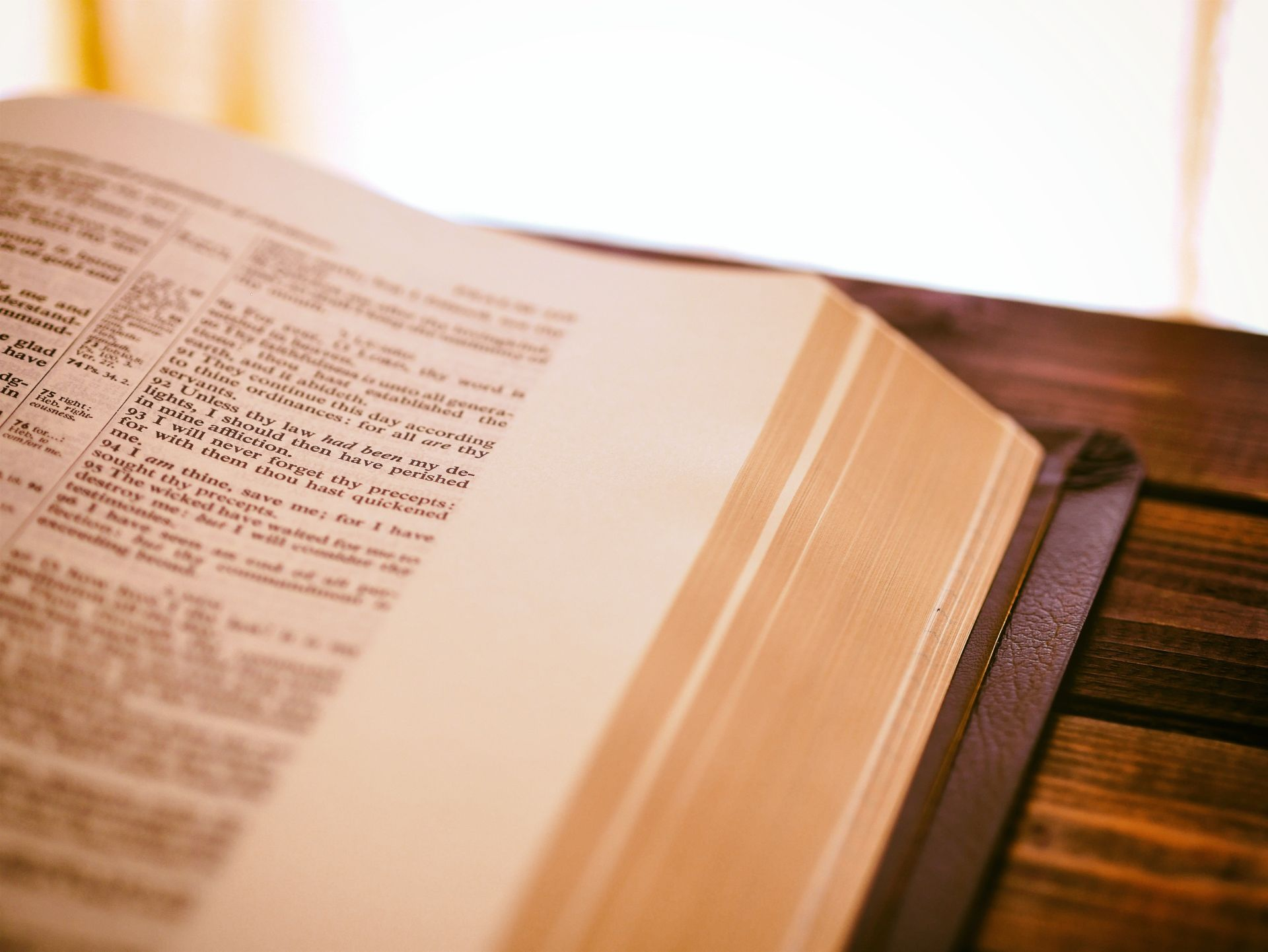 słownik papierowy - zdjęcie wprowadzające